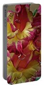 Vibrant Gladiolus Portable Battery Charger by Susan Herber