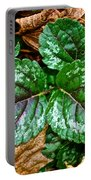 Vibrant Ground Cover  Portable Battery Charger
