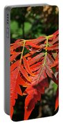 Vibrant Sumac Portable Battery Charger