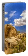 View Of Joshua Tree Portable Battery Charger