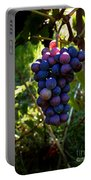 Vineyard 31 Portable Battery Charger