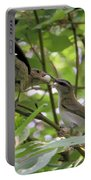 Vireo And Cowbird Portable Battery Charger