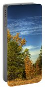 Visions Of Fall  Portable Battery Charger