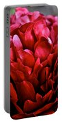 Vivid Red Portable Battery Charger