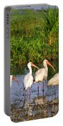Wading Ibises Portable Battery Charger