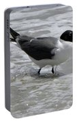 Wading Portable Battery Charger