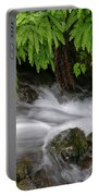 Wahkeena Falls One Portable Battery Charger