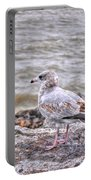 Waiting Gull Portable Battery Charger
