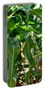Walking Through The Cornfields Portable Battery Charger