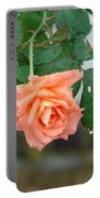 Water Dripping From A Peach Rose After Rain Portable Battery Charger
