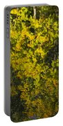 Water Reflection Abstract Autumn 1 F Portable Battery Charger