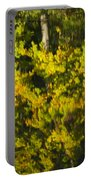 Water Reflection Abstract Autumn 1 G Portable Battery Charger