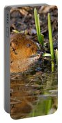 Water Vole At Dusk Portable Battery Charger