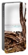 Weathered Beauty Portable Battery Charger