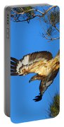 Wedge-tailed Eagle Portable Battery Charger