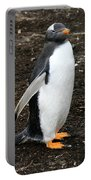 Welcome From A Gentoo Penguin Portable Battery Charger