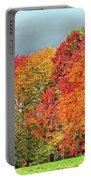 West Virginia Maples 2 Portable Battery Charger by Steve Harrington