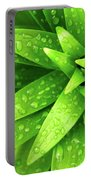 Wet Foliage Portable Battery Charger by Carlos Caetano