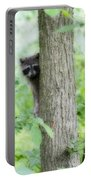When Raccoon Dream Portable Battery Charger