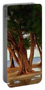Whispering Trees Of Sanibel Portable Battery Charger by Karen Wiles