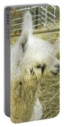 White Alpaca Photograph Portable Battery Charger