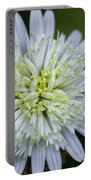 White Aster Portable Battery Charger