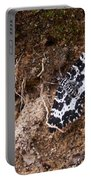 White-banded Black Moth Portable Battery Charger