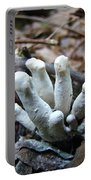 White Club Mushroom - Clavulina  Portable Battery Charger