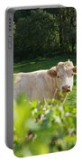 White Cow Portable Battery Charger