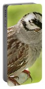 White Crowned Sparrow II Portable Battery Charger