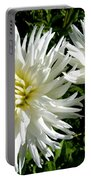 White Dahlias In Autumn  Portable Battery Charger