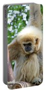 White Handed Gibbon Portable Battery Charger