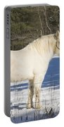 White Horse In Winter Maine Portable Battery Charger