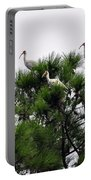 White Ibises Roosting Portable Battery Charger