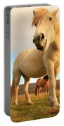 White Icelandic Horse, Iceland Portable Battery Charger
