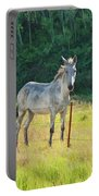 White Mule No.5007 Portable Battery Charger