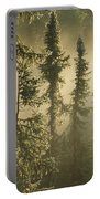 White Spruce In Mist At Sunrise Portable Battery Charger