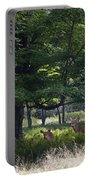White Tail Deer Portable Battery Charger