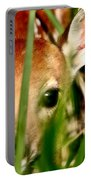 White Tailed Deer Fawn Hiding In Grass Portable Battery Charger