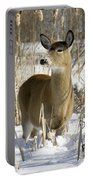 White-tailed Deer In A Snow-covered Portable Battery Charger