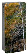 White Tree Fall Colors  Portable Battery Charger