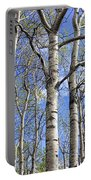 White Trees Against A Blue Sky Portable Battery Charger