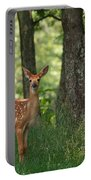 Whitetail Deer Fawn Portable Battery Charger