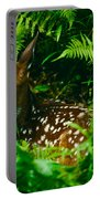 Whitetail Fawn And Ferns Portable Battery Charger