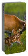 Whitetail Fawn Nursing Portable Battery Charger