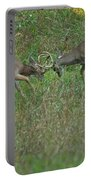 Whitetail Fighting_9668 Portable Battery Charger