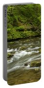 Whitewater River Spring 8 A Portable Battery Charger