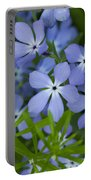 Wild Blue Phlox Flower 1 A Portable Battery Charger