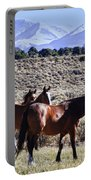 Wild Bunch Portable Battery Charger