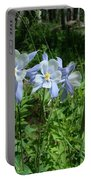 Wild Columbine In An Aspen Glade Portable Battery Charger